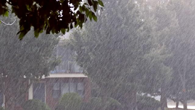 Today weathwer forecast - අදත් මි.මී 75 ඉක්මවු වැසි