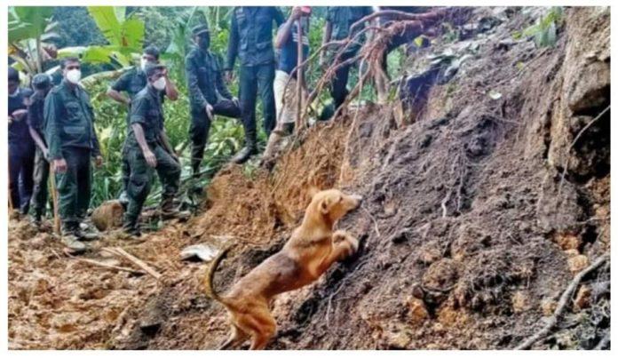 Mawanella landslide - නාය යෑමෙන් පස් කන්දට යටවූ සිය ආදරණියන් පෙන්වූ සුරතලා (PHOTOS)