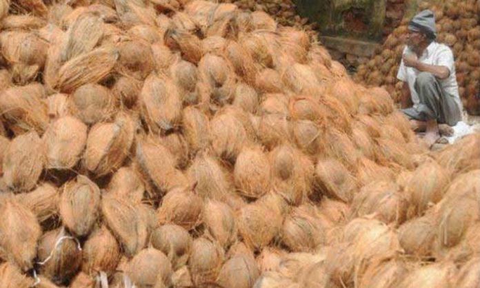 Coconut - පොල් සඳහා පනවා තිබූ උපරිම සිල්ලර මිල ඉවතට
