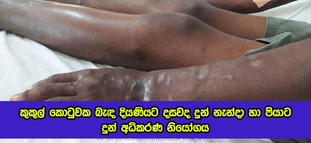 Child Abuse in Norochcholai - කුකුල් කොටුවක බැඳ දියණියට දසවද දුන් නැන්දා හා පියාට දුන් අධිකරණ නියෝගය