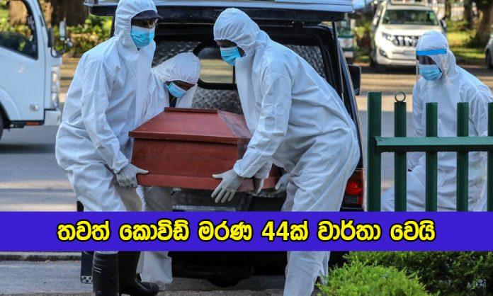 Covid Deaths in Sri lanka Yesterday - තවත් කොවිඩ් මරණ 44ක් වාර්තා වෙයි